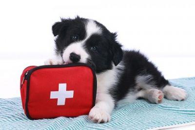 Спешна помощ - Изображение 1