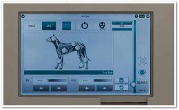 Рентген за животни - Изображение 1