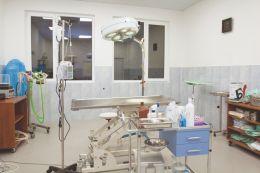 Операционна за животни и домашни любимци - Ида Вет - Плевен - 01 - Ида Вет - Плевен